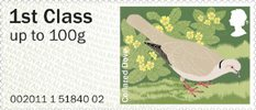 Pictorial Post & Go - Birds of Britain II 1st Stamp (2011) Collared Dove