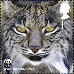 World Wildlife Fund 1st Stamp (2011) Iberian Lynx