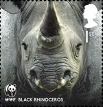 World Wildlife Fund 1st Stamp (2011) Black Rhinoceros