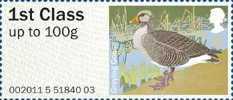 Pictorial Post & Go - Birds of Britain III 1st Stamp (2011) Greylag Goose