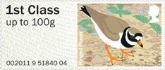Pictorial Post & Go - Birds of Britain IV 1st Stamp (2011) Ringed Plover