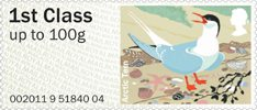 Pictorial Post & Go - Birds of Britain IV 1st Stamp (2011) Arctic Tern