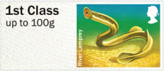 Post & Go: River Life - Freshwater Life 3 1st Stamp (2013) River Lamprey