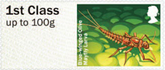 Post & Go: River Life - Freshwater Life 3 1st Stamp (2013) Blue-winged Olive Mayfly Larva