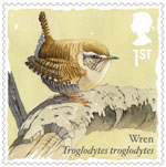 Songbirds 1st Stamp (2017) Wren