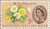 National Nature Week 3d Stamp (1963) Posy of Flowers