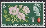 Tenth International Botanical Congress, Edinburgh 6d Stamp (1964) Dog Rose