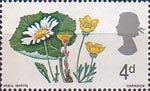 British Flora 4d Stamp (1967) Ox-eye Daisy, Coltsfoot and Buttercup