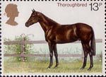 Horses 13p Stamp (1978) Thouroughbred