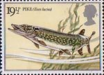 British River Fishes 19.5p Stamp (1983) Northern Pike