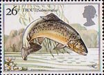 British River Fishes 26p Stamp (1983) Brown Trout