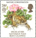 Nature Conservation - Species At Risk 34p Stamp (1986) Natterjack Toad