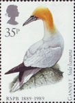 Birds 35p Stamp (1989) Northern Gannet