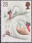 Swans 28p Stamp (1993) Swans and Cygnet