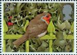 Christmas Robins 25p Stamp (1995) European Robin on Railings and Holly