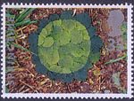 The Four Seasons. Springtime 35p Stamp (1995) Hazel Leaves