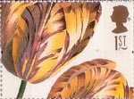 Greetings Stamps. 19th-century Flower Paintings 1st Stamp (1997) Tulipa (Ehret)
