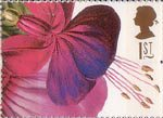 Greetings Stamps. 19th-century Flower Paintings 1st Stamp (1997) Fuschia Princess of Wales (Augusta Withers)