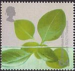 Millennium Projects (4th Series). 'Life and Earth' 64p Stamp (2000) Hydroponic Leaves (Project SUZY, Teeside)
