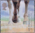 Millennium Projects (7th Series). 'Stone and Soil' 1st Stamp (2000) Horses Hooves (Trans Penine Trail, Derbyshire)