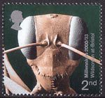 Millennium Projects (9th Series). 'Mind and Matter' 2nd Stamp (2000) Head of Gigantios descructor (Ant) (Wildscreen at Bristol)