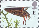 Europa. Pond Life E Stamp (2001) Great Diving Beetle
