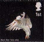 Birds of Prey 1st Stamp (2003) Barn Owl with folded Wings and Legs down