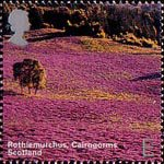 A British Journey : Scotland E Stamp (2003) Rothiemurchus, Cairngorms