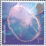 Sea Life 1st Stamp (2007) Moon Jellyfish