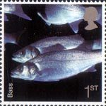 Sea Life 1st Stamp (2007) Bass