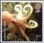Sea Life 1st Stamp (2007) Octopus