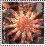 Sea Life 1st Stamp (2007) Common Sun Star