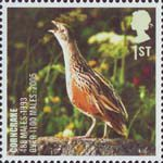 Birds 1st Stamp (2007) Corncrake