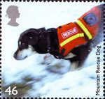 Working Dogs 46p Stamp (2008) Mountain Rescue Dog