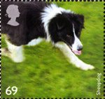 Working Dogs 69p Stamp (2008) Sheepdog