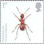 Endangered Species - Insects 1st Stamp (2008) Red Barbed Ant