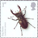 Endangered Species - Insects 1st Stamp (2008) Stag Beetle