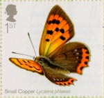 Butterflies 1st Stamp (2013) Small Copper
