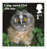 Owls 1st Stamp (2018) Long-eared Owl, juvenile