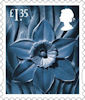 Country Definitive 2019 £1.35 Stamp (2019) Wales