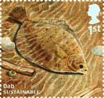Sustainable Fish 1st Stamp (2014) Dab