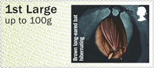 Post & Go : Hibernating Animals 1st Stamp (2016) Brown Long-eared Bat