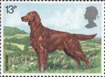 Dogs 13p Stamp (1979) Irish Settler