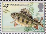 British River Fishes 29p Stamp (1983) Eurasion Perch