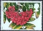 The Four Seasons. Autumn 33p Stamp (1993) Rowan