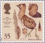 The Wildfowl and Wetlands Trust 1946-1996 35p Stamp (1996) Bittern