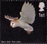 Birds of Prey 1st Stamp (2003) Barn Owl in Flight with Wings raised