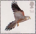 Birds of Prey 1st Stamp (2003) Kestrel with Wings fully extended upwards
