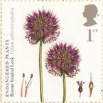 Plants - UK Species in Recovery 1st Stamp (2009) Round-Headed Leek