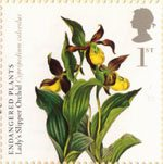 Plants - UK Species in Recovery 1st Stamp (2009) Lady's Slipper Orchid